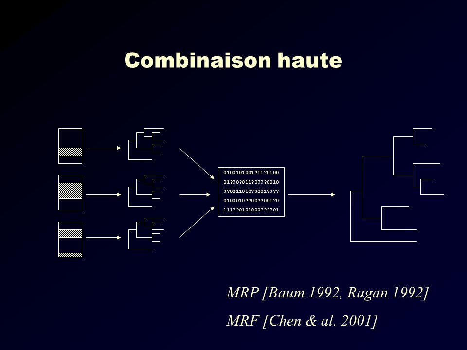 Combinaison haute MRP [Baum 1992, Ragan 1992] MRF [Chen & al. 2001]